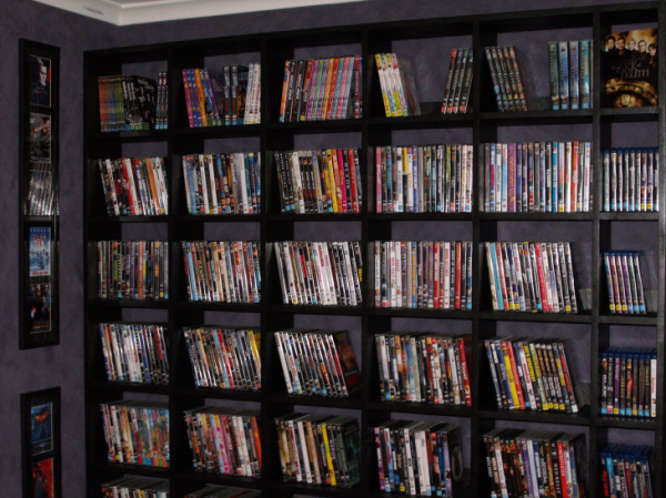 Finished DVD Shelves